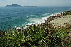 Santinho Coast