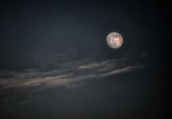 Moonrising_1_van_1_.jpg