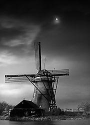 2008POTY01_Kinderdijk.jpg