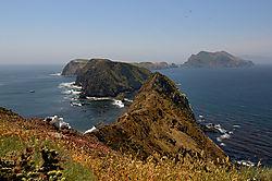 Channel_Islands_01722220080503asmall.jpg
