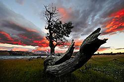 Lazo_sunrise.jpg