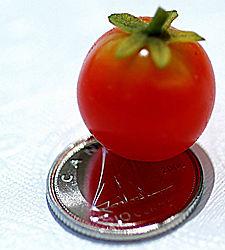 tomatoe_2.jpg