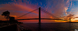 verrazano_bridge_pano_nikoinian_entry.jpg