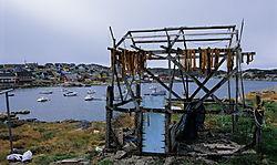 2008-18-17.jpg