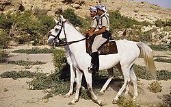 ROP_Horse_Patrol_41.jpg