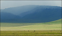 Rain-in-the-Ngorongoro.jpg