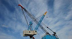 Cranes-3.jpg