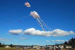 Kites-4.jpg