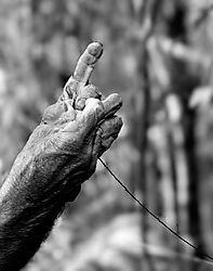 Hands-1-NikoniansGallery-_2_.jpg