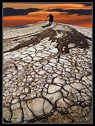 muddyvolcanos031.jpg