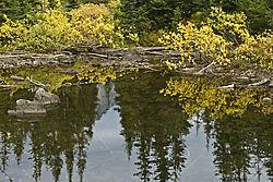 0810_Lake_Ann_168.jpg