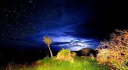 African_Night.jpg