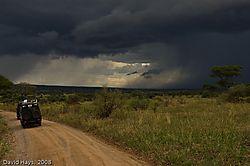 Tarangire_Storm.jpg
