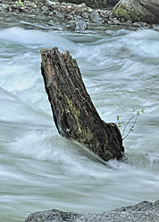 Yosemite_007_2009.JPG