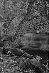 Yosemite_H.jpg