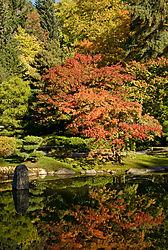 0710_UWA_Japanese_Grdn_068.jpg