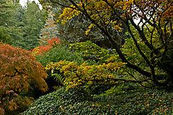 Kubota_Gardens_030.jpg