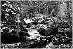 winter_stream.jpg